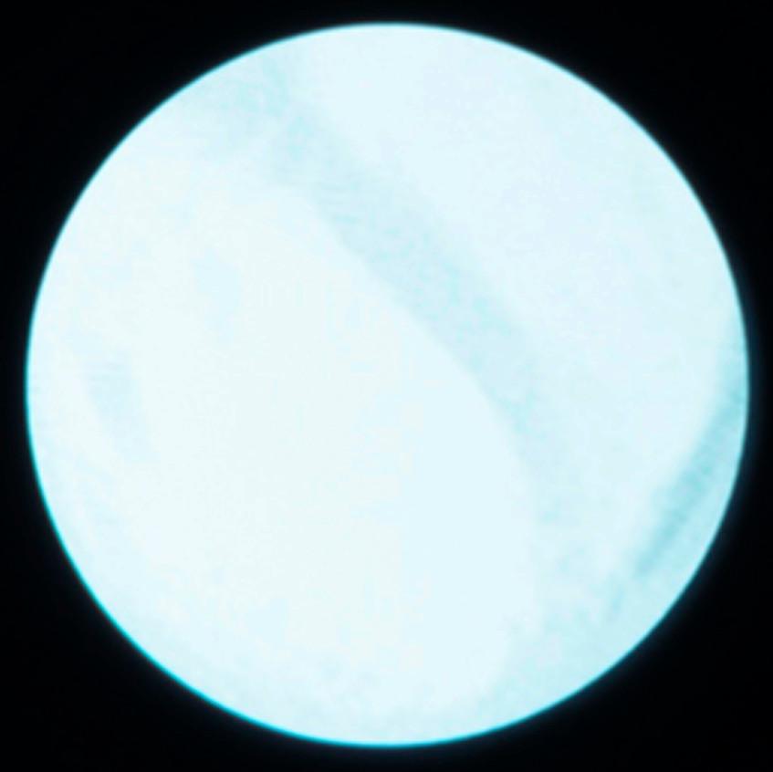 Planète_2_80X80