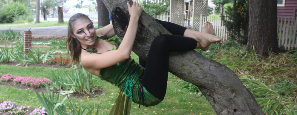 Puck on Tree.jpg