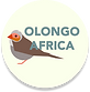 olongo-africa-circle-shadow.png