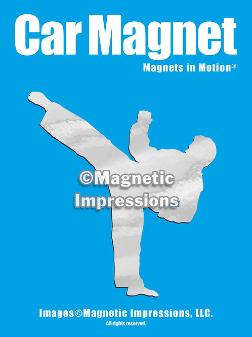 Male Martial Artist Magnet in Motion