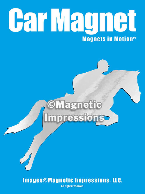 Equestrian Magnet in Motion