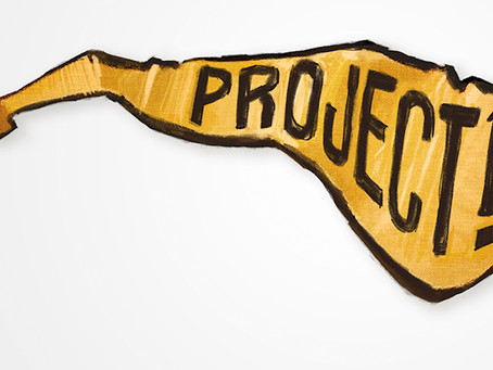 Working with Project 19