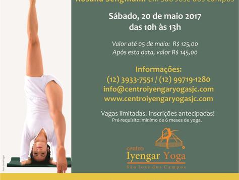 Aulão de Iyengar Yoga com Rosana Seligmann