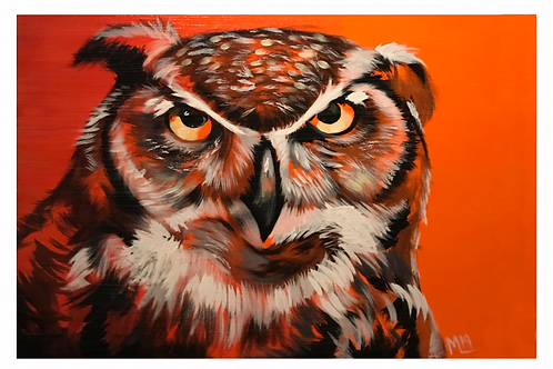 """Grumpy Owl"" print of original acrylic painting"