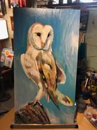 """Snow Owl"" ©Matthew Laznicka"