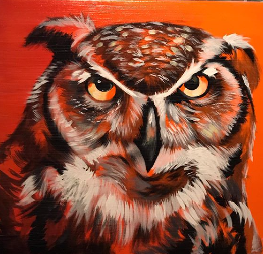 """Grumpy Owl"" ©Matthew Laznicka"