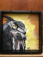 """""""Tray Owl"""" ©Matthew Laznicka"""