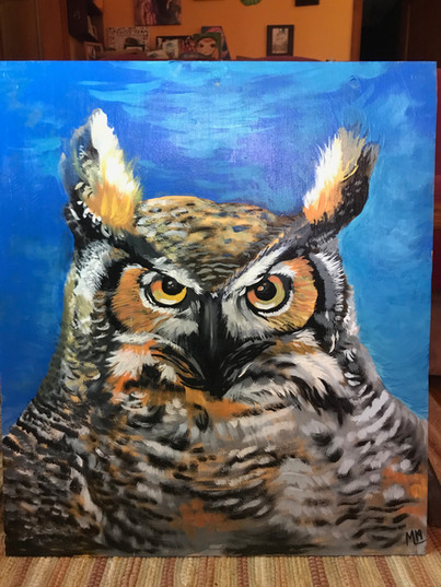 """Blue Owl"" ©Matthew Laznicka"