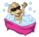 banho e tosa StarDog