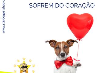Cães também sofrem do coração: conheça os sintomas e as causas do problema