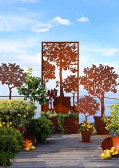 Orangerie Serie