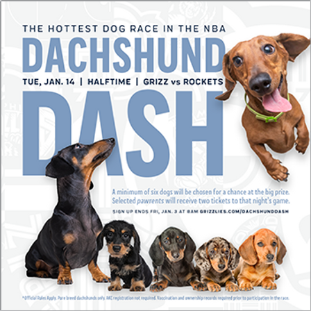 MG_200114_Dashchund Dash_social_1080x108