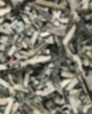 Shreds_US_Dollar_Details.jpg