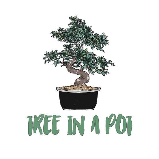 Tree in a Pot