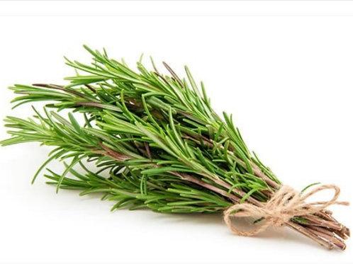 Organic Rosemary 0.5 oz.