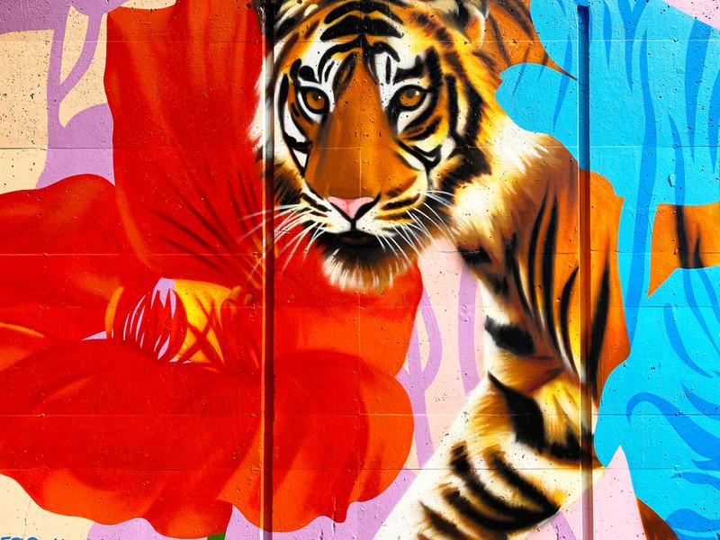 dcwalls_tiger_detail.jpg