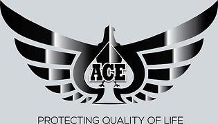 ACE_edited.jpg