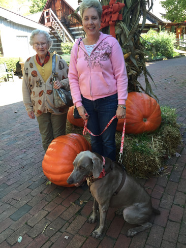 Gloria and her Mother have fall fun with Lilly