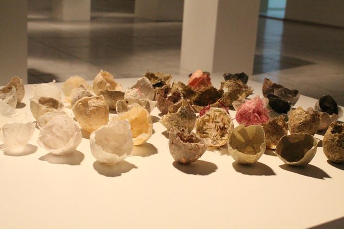 Human shells