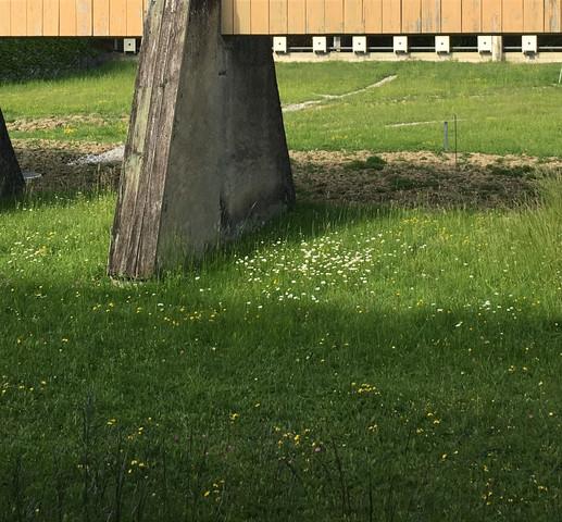 2019-05-25-Arquebuse-stand.jpg