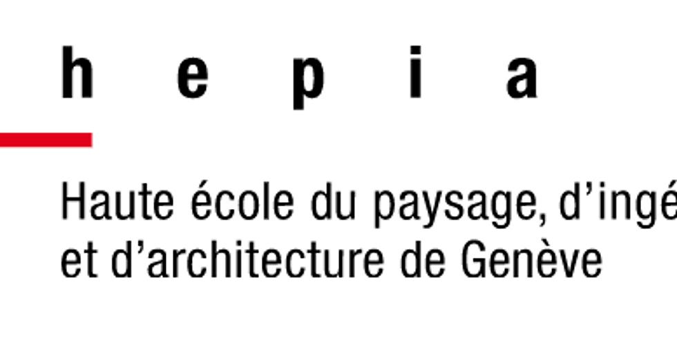 Travail de recherche (HEPIA): densification de la zone 5 à Chêne-Bougeries Nord