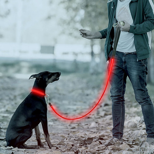 LASER PET RECHARGEABLE LED REFLECTIVE MESH LEAD IN RED