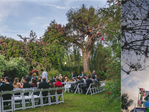 Bria and Greg's Wedding - Sunken Gardens St Pete, Florida - Tampa Wedding Photographer