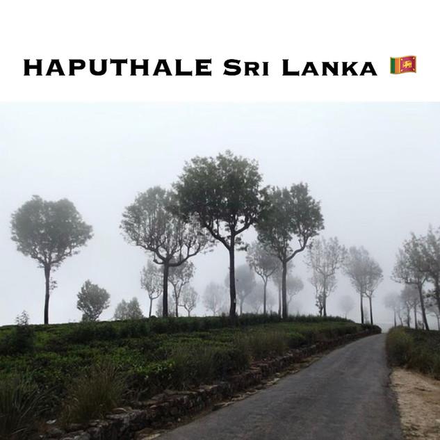 HAPUTALE SRI LANKA