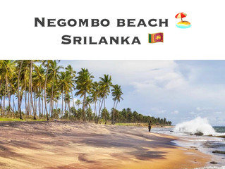 NEGOMBO BEACH 🏖 SRI LANKA