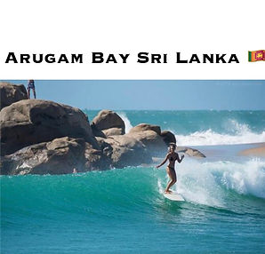 ARUGAM BAY|SRI LANKA