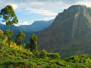 KNUCKLES MOUNTAIN SRI LANKA
