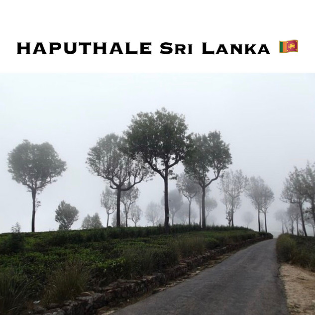 Haputhale Sri Lanka