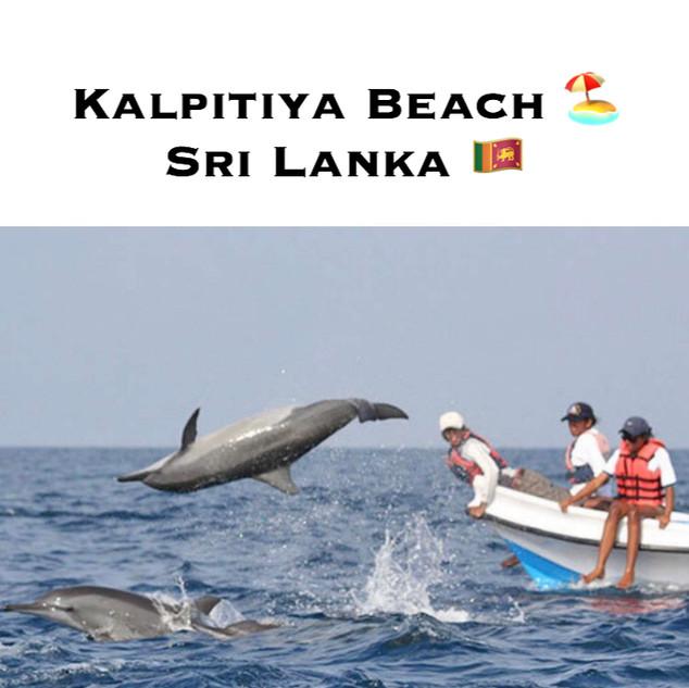 KALPITIYA BEACH SRI LANKA