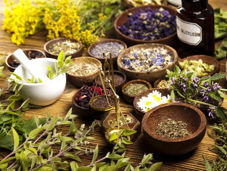 Chinese Herb Effective for COVID-19