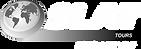 Logo SLAT WHITE.png