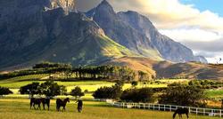 Путешествие в Южную Африку