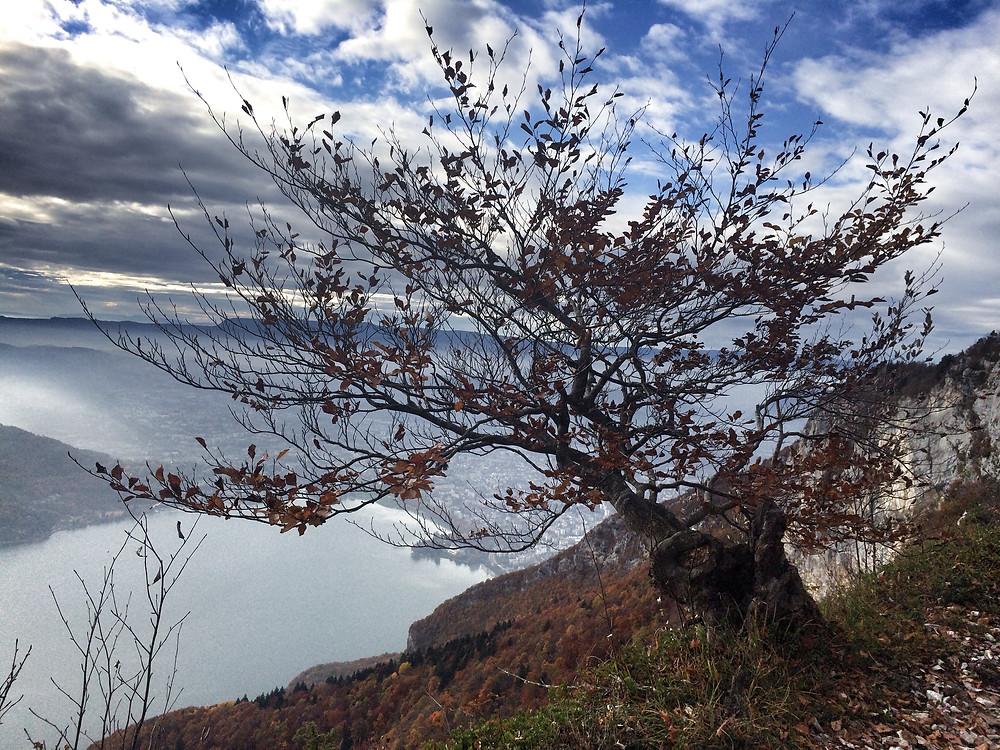 Annecy Lake Озеро Анси поход в горы