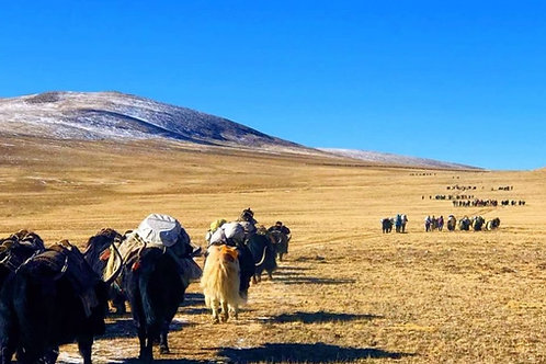 Romantischer Limi-Tal Blick zum Kailash