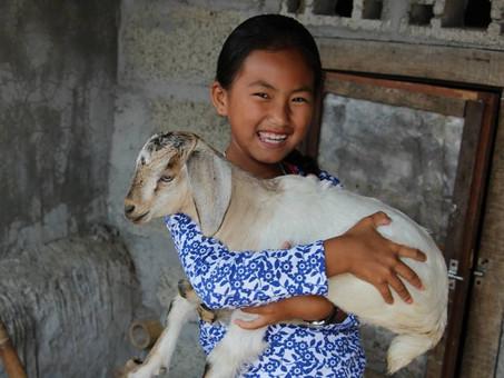 Purnima Tamang