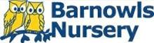 Barnowls Logo 1.jpg