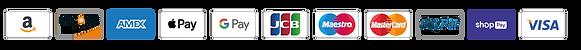 amazon-americanexpress-american express-amex-apple pay-applepay-google pay-googlepay-jcb-maestro-mastercard-paypay-shoppay-visa