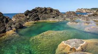Carribean2.jpg