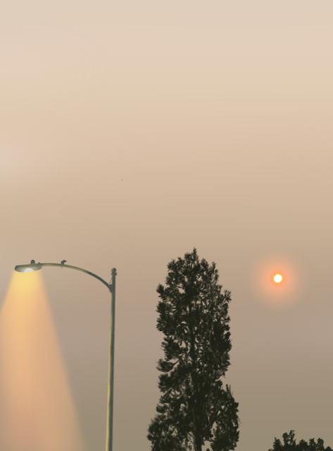 Smoky LA