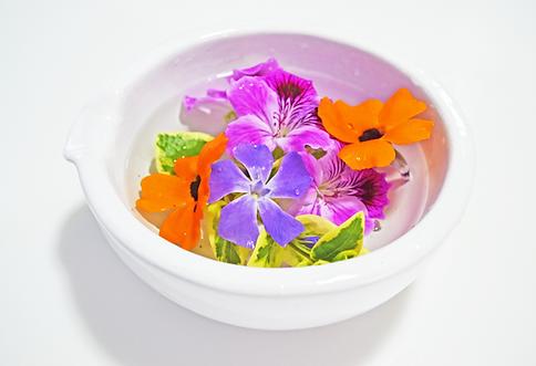 esencias florales flotantes.png