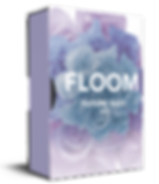 echo sound works floom - flume inspired serum soundset, coms with bonus future bass massive presets