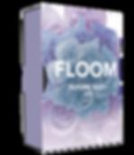echo sound works floom - flume inspired serum soundset, coms with bonus future bass massive presets