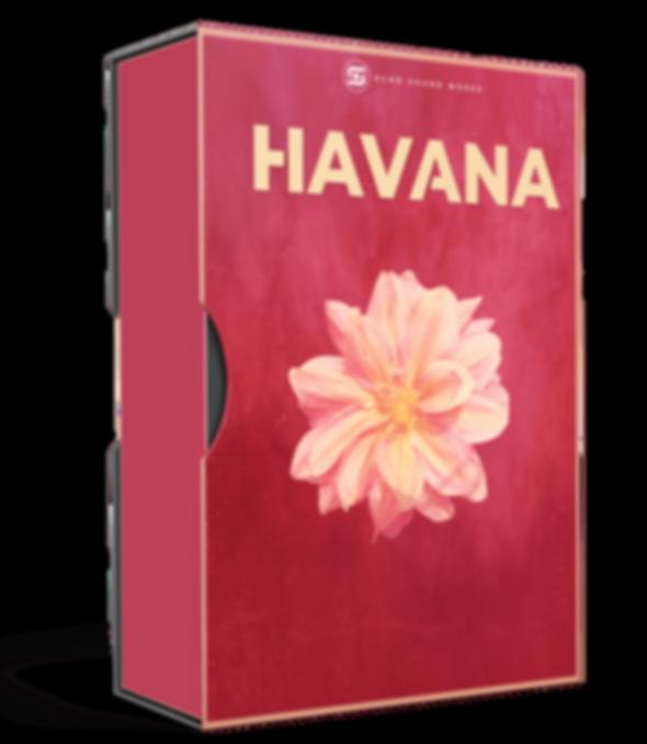 echo sound works havana, latin and moomb