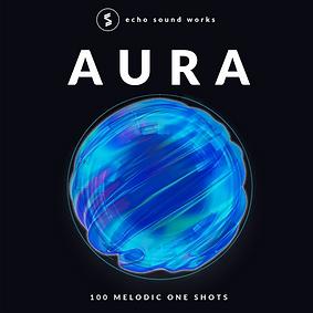 Echo Sound Works Aura One Shot Samples.p