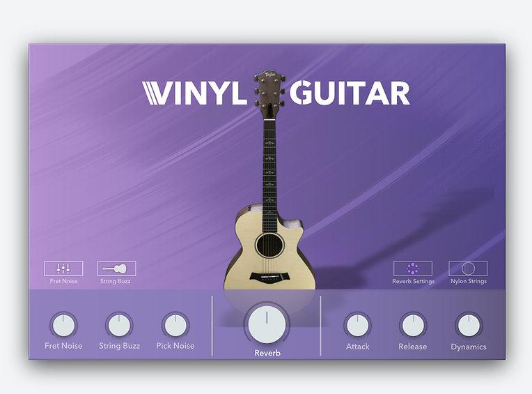 Vinyl Guitar gui.jpg
