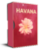 Havana - latin and moombahton serum presets